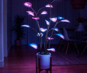 Fluora LED Houseplant