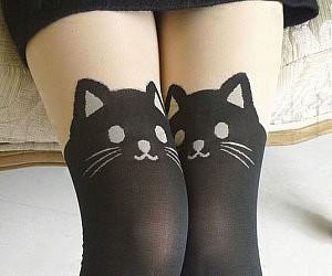Black Cat Stockings